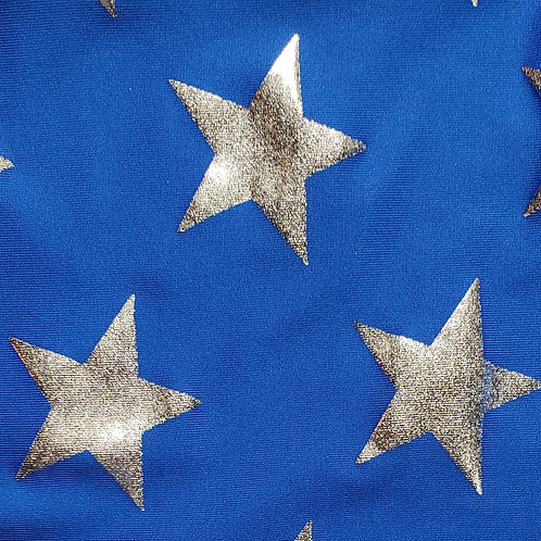 Royal Blue with Silver Stars