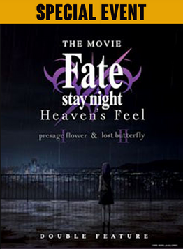 Fate:StayNight.png
