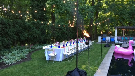 Bistro Lighting suspended of long dinner table - Private Residence Fairmount Park, Philadelphia, Pa