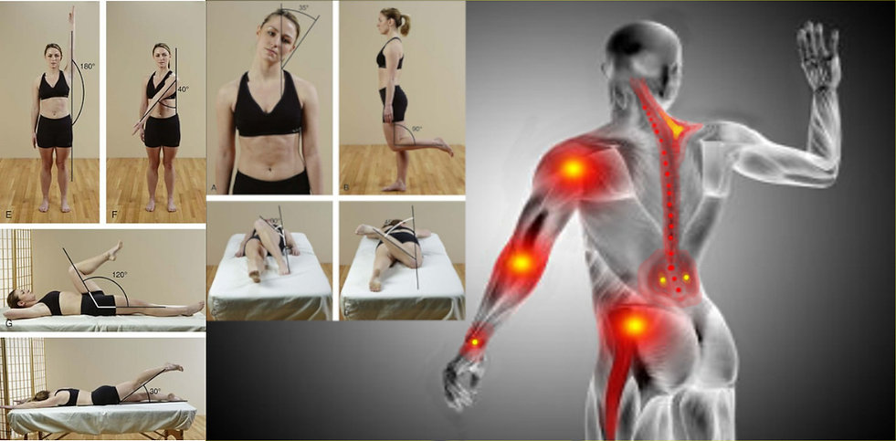 photo containing different assessment angles and areas of pain