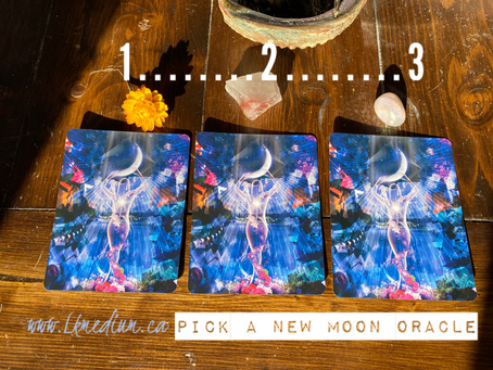 What is your New Moon Oracle?