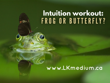 Intuition workout: frog or butterfly ?