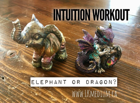 Intuition workout: elephant or dragon?