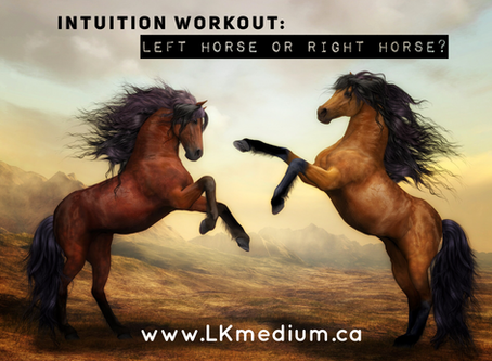 Intuition workout: left horse or right horse?