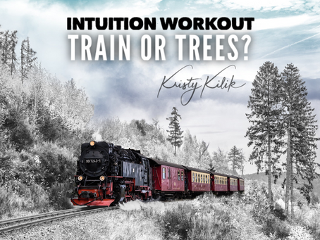Intuition workout: train or trees?
