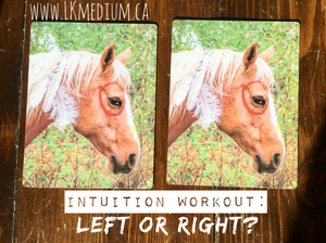 intuition training. pick left or right horse