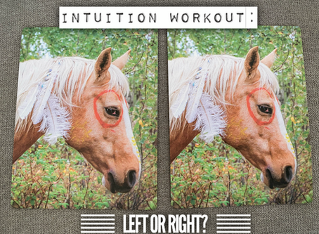 Intuition Workout: left card or right card?