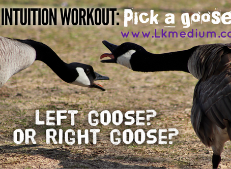 Intuition Workout: pick a goose