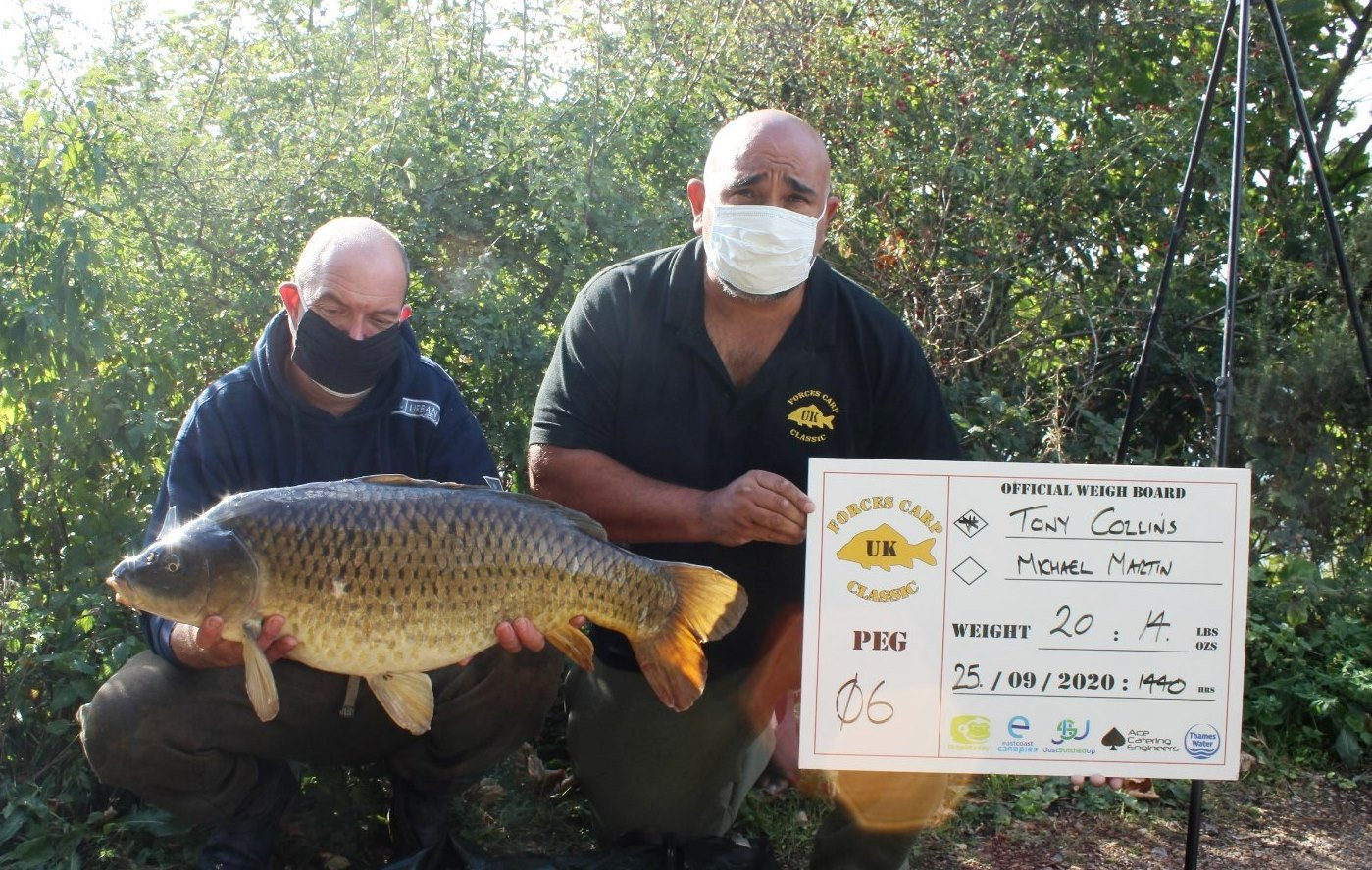 16.  A checky Common.JPG