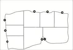 4.  Kingfisher x 8.jpg
