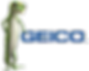 Geico_edited_edited.png