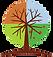 TreeWeb.png