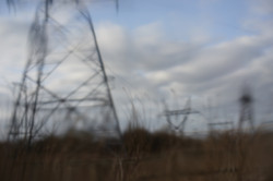 Ballycoolin 2 Landscape