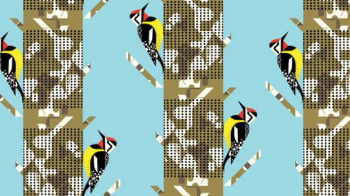 Yellow Bellied Sapsucker Poplin CHARLEY HARPER