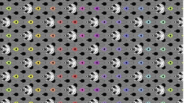 Pandamonium - Linework - by Tula Pink