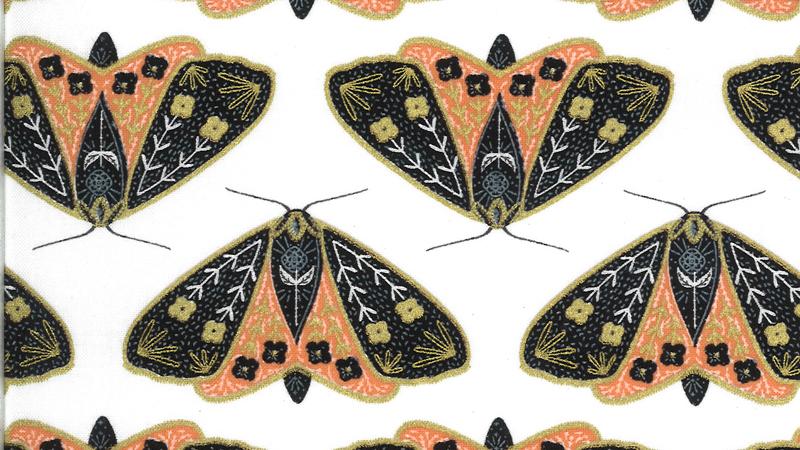Ivory Poppy Moth MODA Dwell In Possibility