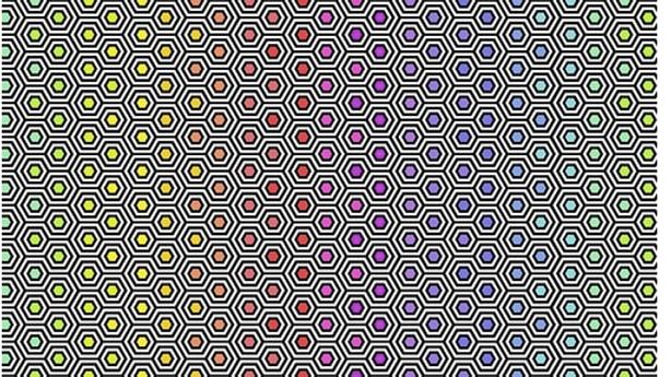 Hexy Rainbow TULA PINK Linework