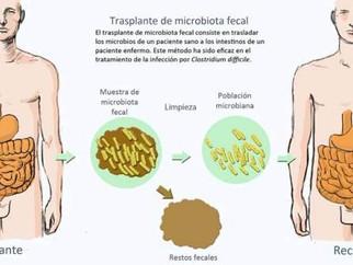 Nueva técnica para el trasplante de microbiota fecal intestinal