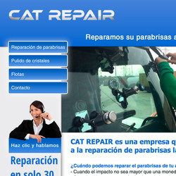 Cat Repair
