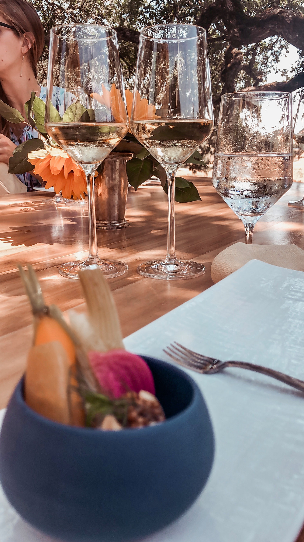 Sonoma Grape Girl, Audra Tavelli, alexander valley, experience alexander valley, sonoma county, sonoma county wine event, healdsburg event, healdsburg wine event, sonoma county blogger, alexander valley wine tasting, alexander valley wineries, jordan winery