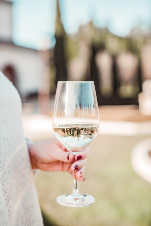 audra tavelli, sonoma grape girl, sonoma county, sonoma blog, wine tasting healdsburg, wine glass, ferrari carano, dry creek valley, sonoma wine tasting, what to bring wine tasting, wine blogger, san francisco blogger