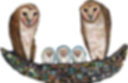 Owl%252520Nest_edited_edited_edited.png