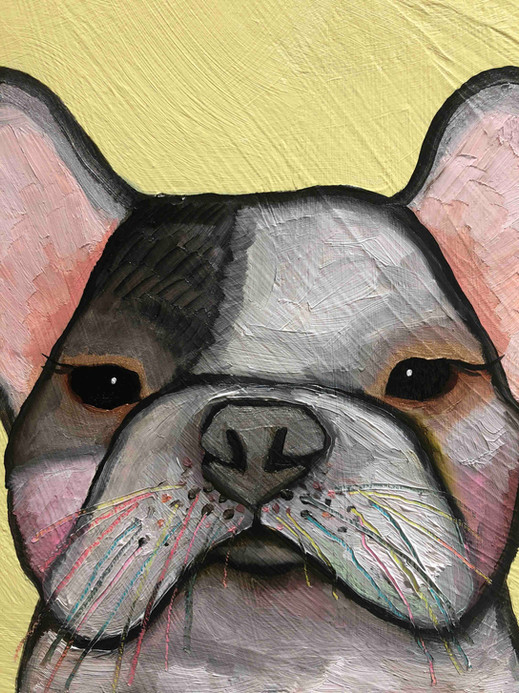 Dogs close up 2