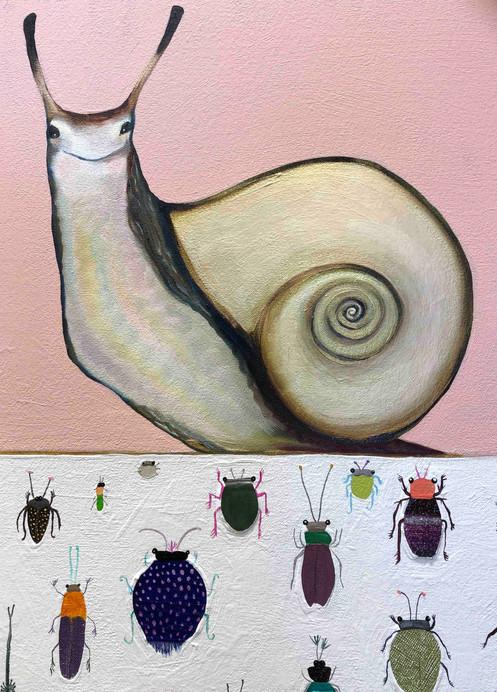 Snail's House close up 2