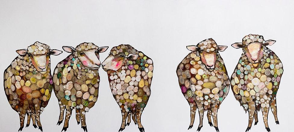 Eli Halpin Sheep