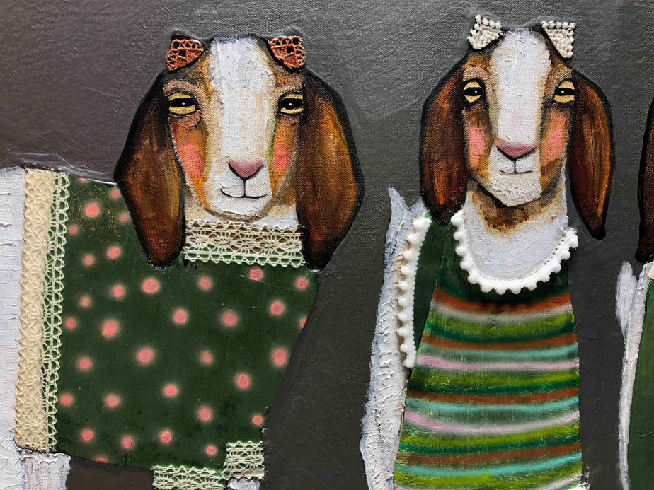 Boer Goats In Sweaters Close Up 1