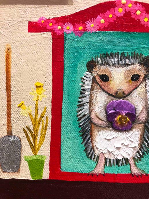hedgehog-house-close-up-1jpg