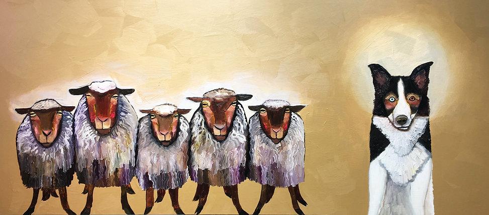 Border Collie Sheep Herder by Eli Halpin