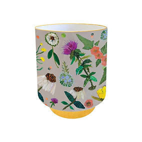 wildflowers-evening-primrose-and-coneflo