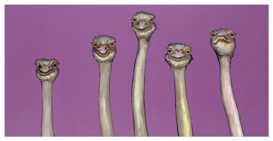 five-ostriches-in-radiant-orchid_41.jpg
