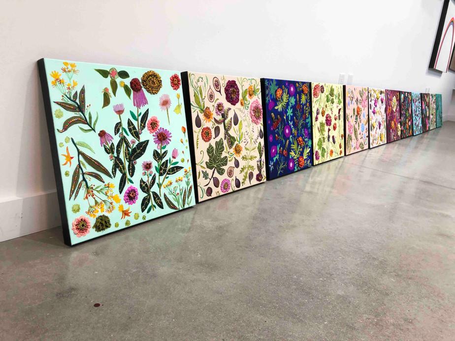 Eli's Wildflowers Collection