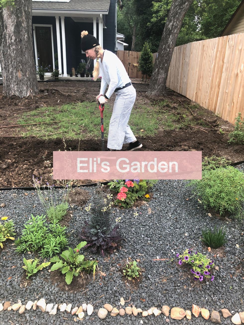 Eli's Butterfly Garden