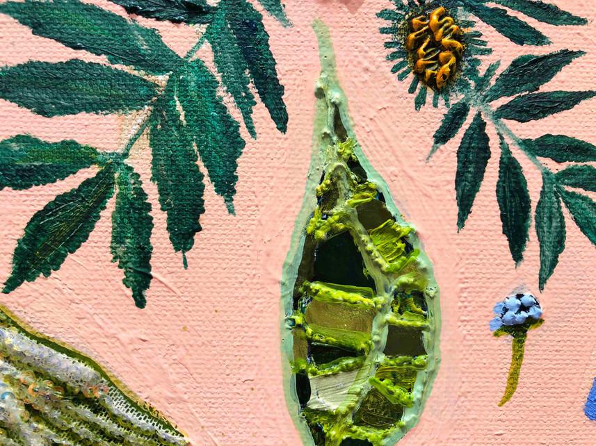 pincushions close up 2