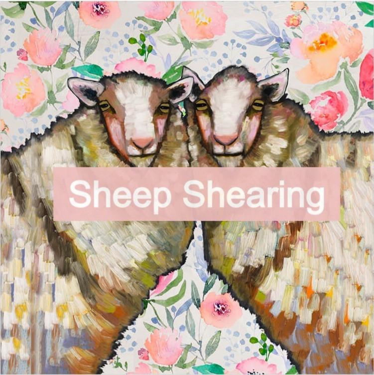 Sheep Shearing Eli Halpin