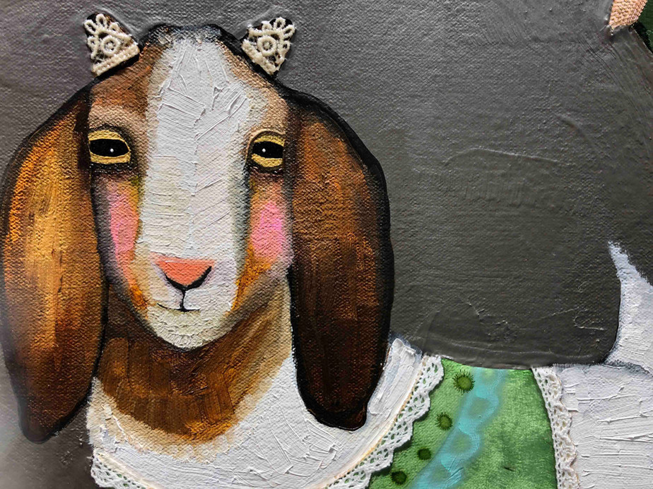 Boer Goats In Sweaters Close Up 4