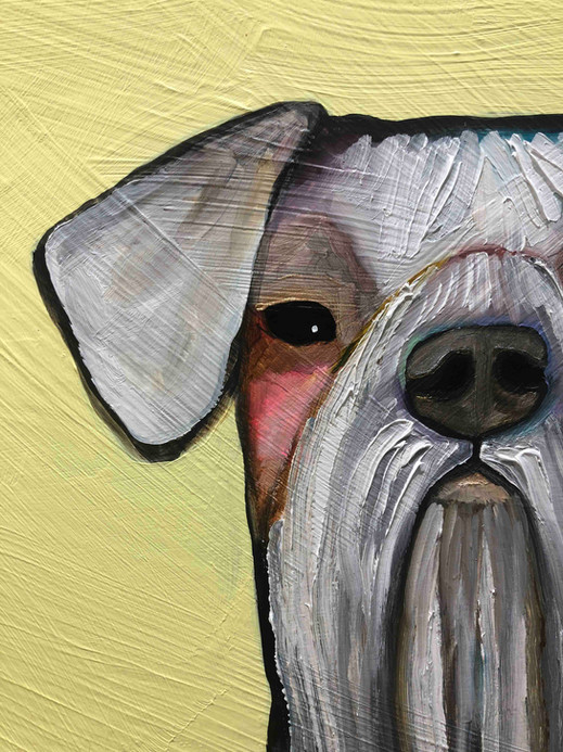 Dogs close up 1