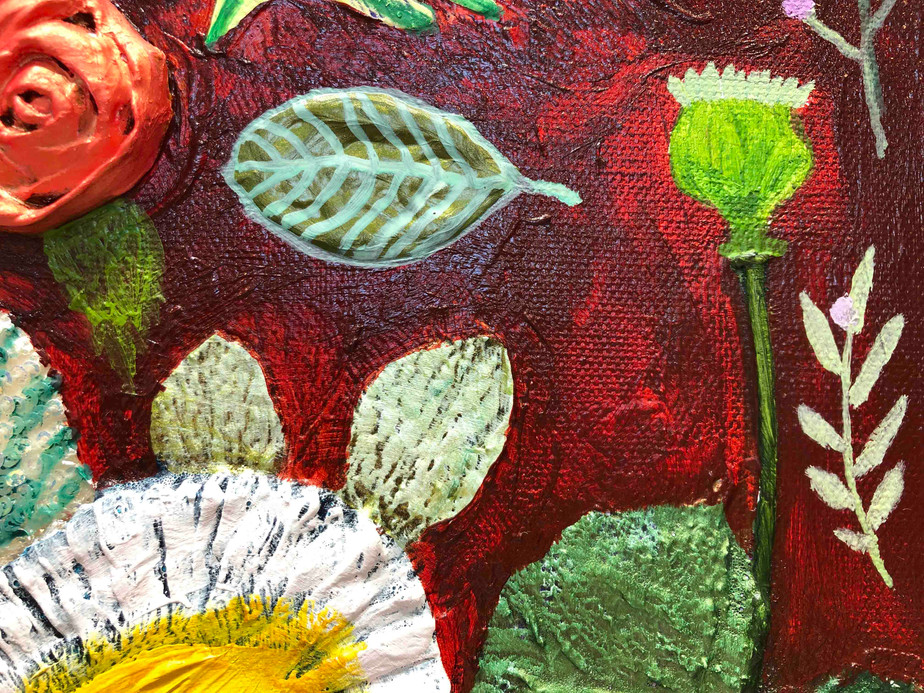 Strawflowers close up 3
