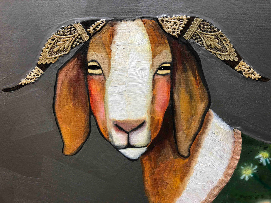 Boer Goats In Sweaters Close Up 2