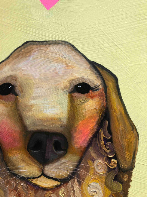Dogs close up 3