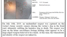 DOG STABBED TO DEATH!