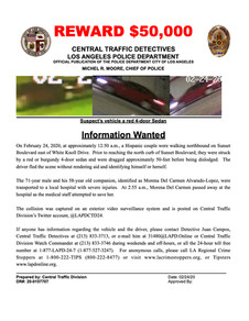 Fatal Hit and Run Echo Park