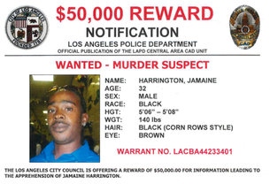 WANTED MURDER SUSPECT