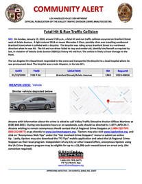 Fatal Hit and Run in SFV