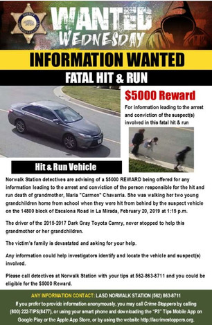 REWARD FOR INFORMATION IN FATAL HIT AND RUN.