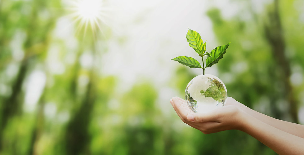 M-Chemicals Produits haute qualité recyclable écologique