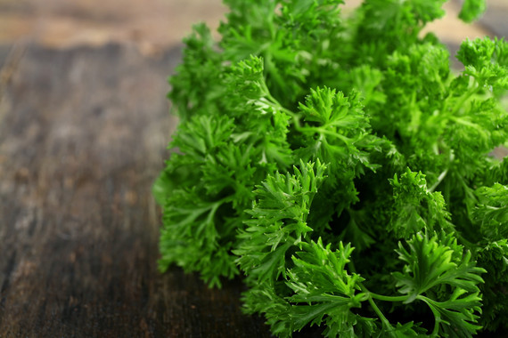 PARSLEY & Inflamation